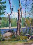 Shurkin-Zaozersky Wladimir - Финская Карелия
