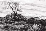 Сошников Денис - Пейзаж с деревом