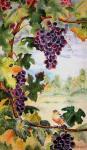 Valevskaya Valentina - Finch and grapes