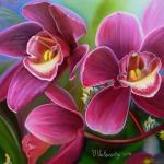 Valevskaya Valentina - Orchid (macro)