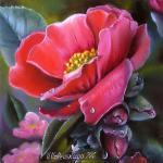 Valevskaya Valentina - Camellia flower.