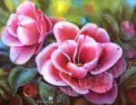 Valevskaya Valentina - Camellia flowers.