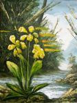 Sizonenko Iuori - Flowers by the river.