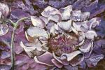Sizonenko Iuori - A blooming flower.