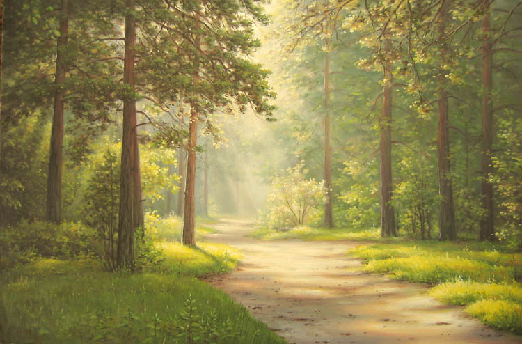 The road to a pine forest