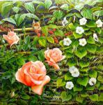 Реми Алессандро - Розы