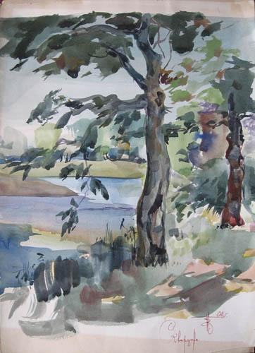 Летом на озере Сквордино