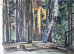 Plastinin Vladimir - A ray of  sunlight on the pines