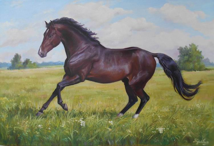 Гнедой конь