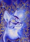 Чуносова Мария - Синий кот