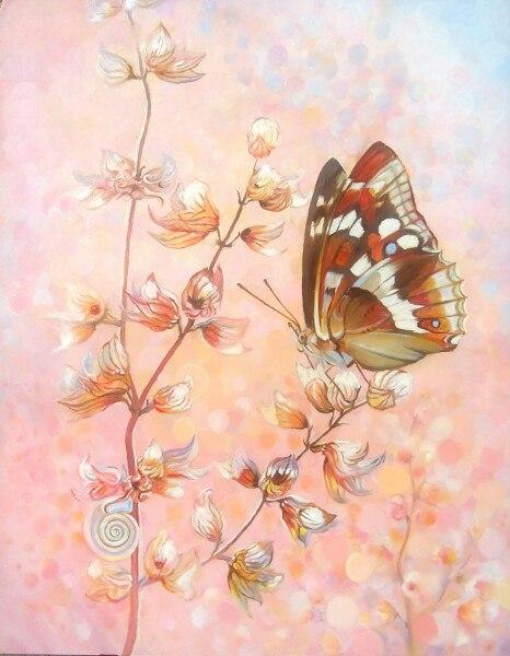 Утро  бабочки
