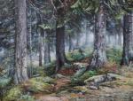 Желонкин Александр - В лесу