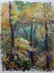 В густом лесу
