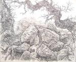 Гусаренко Андрей - одинокое дерево