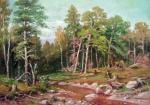Kulagun Oleg - Sosonovij pine forest.