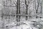 Kulagun Oleg - Spring flood.