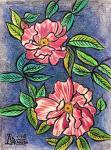 Роза Scentimental